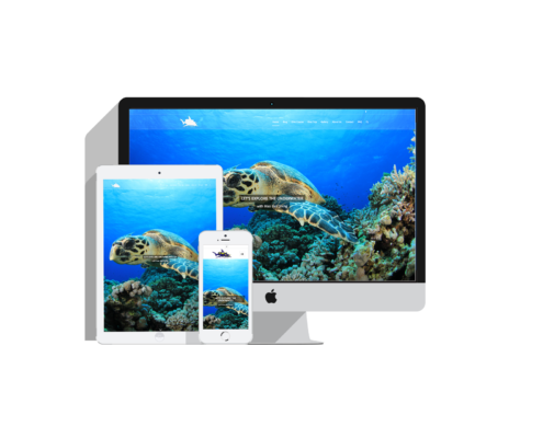 Bali Diving, Web Design, Seo